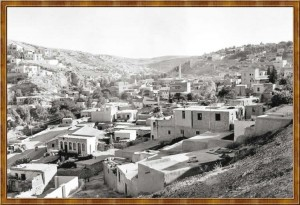 amman_shabsough_1